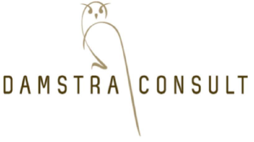 Damstra Consult
